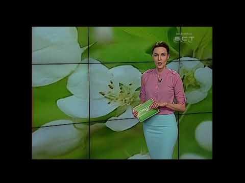ПОГОДА В БРАТСКЕ НА 26 МАЯ Придётся взять зонтик