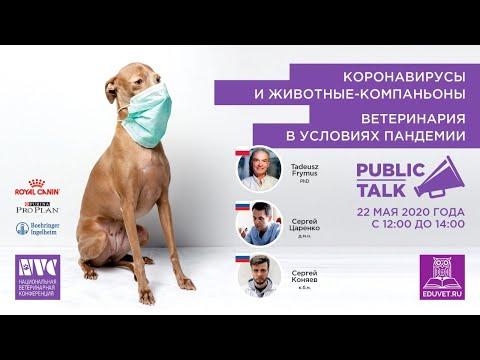 Коронавирусы и животные компаньоны: ветеринария в условиях пандемии. Лекция и круглый стол.