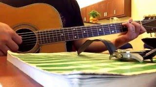Guitar Hoa Cỏ May