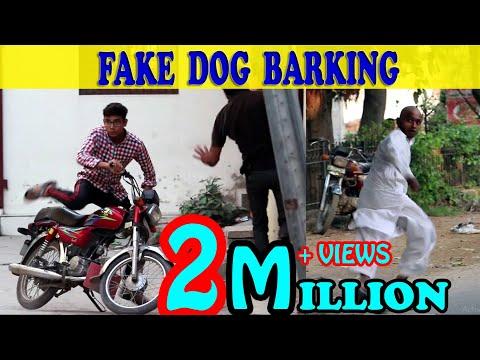 Fake Dog Barking Prank | Zero Brand | Guru Raaj | Fakhar Zaman | 2019