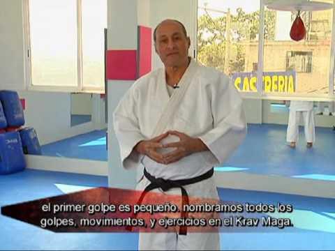 Especial Artes Marciales 2009 Krav Maga /Nippon Kempo / Jet Kun Do