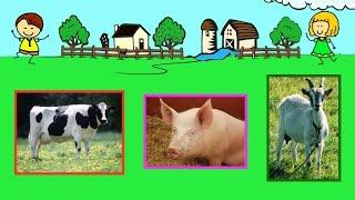 Zwierzęta w gospodarstwie rolnym na wsi – film edukacyjny dla dzieci – lekcja po polsku