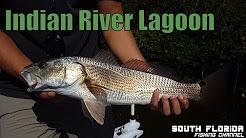 Fishing Wabasso Florida Indian River Lagoon