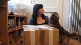 Unboxing Mohair Bear Making Supplies