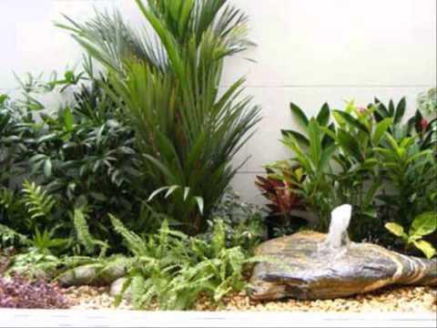 จัดสวนหน้าบ้านตามหลักฮวงจุ้ย ออกแบบการจัดสวน