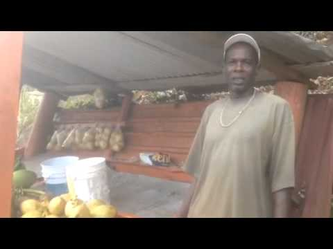 Supporting local business in Grenada and the OECS. Interview by Justine Cleophas Pierre