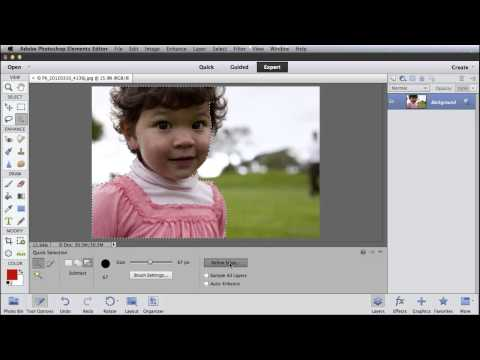 Selecting Fine Detail Using Refine Edge with Photoshop Elements 11