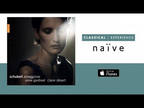 Schubert - Arpeggione, Sonatina & Lieder Transcriptions - Anne Gastinel (Full Album)