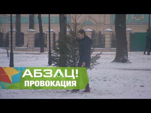 Украсть елку у народных депутатов Провокация Абзаца - Абзац - 29.12.2016
