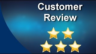Polar Bear Windows Bristol  Amazing Five Star Review by David J.
