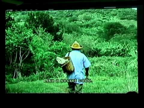 TV Serrana from Cuba's Sierra Maestra Mountains (Part 2)