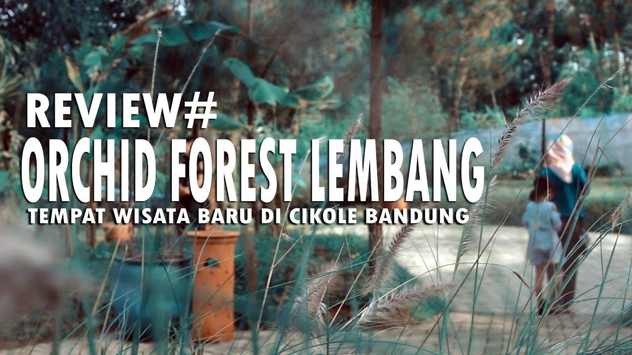 gambar wisata cikole bandung Orchid Forest Lembang Tempat Wisata Baru Di Bandung Review Vlog