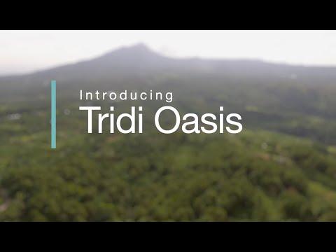 Circulate Capital Investment Portfolio Spotlight: Tridi Oasis