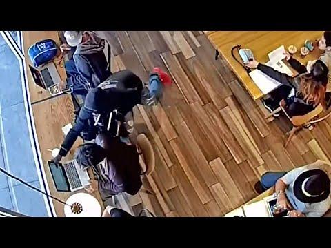 Laptop Thefts Plaguing Berkeley Cafes Despite Recent Arrests