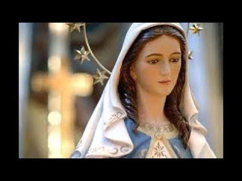Lindos hinos de Nossa Senhora, Suave amor de Mãe!