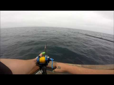 Southern California tuna fishing