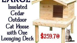 Large Insulated Cedar Outdoor Cat House With One Lounging Deck