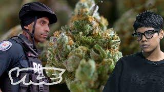 High Robbery: Canada's Violent Cannabis Dispensary Raids