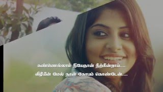 Thalli Pogathey Full Song LYRICS VIDEO  Achcham Yenbadhu Madamaiyada  A R Rahman