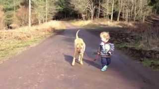 """Niño saca a pasear a su perro """"Esperame acá que ya vuelvo"""""""