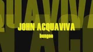 john acquaviva bungee