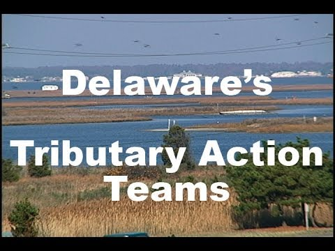 Delaware Tributary Action Teams