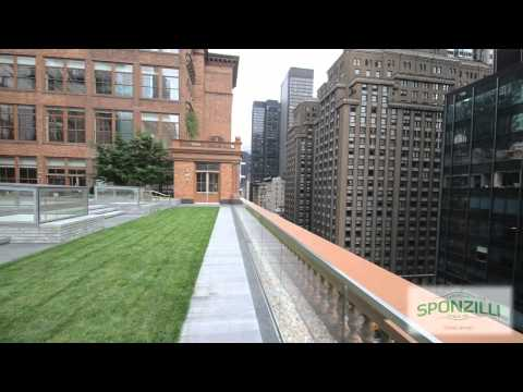 THE FINE ART OF ROOFTOP LANDSCAPING AT CARNEGIE HALL