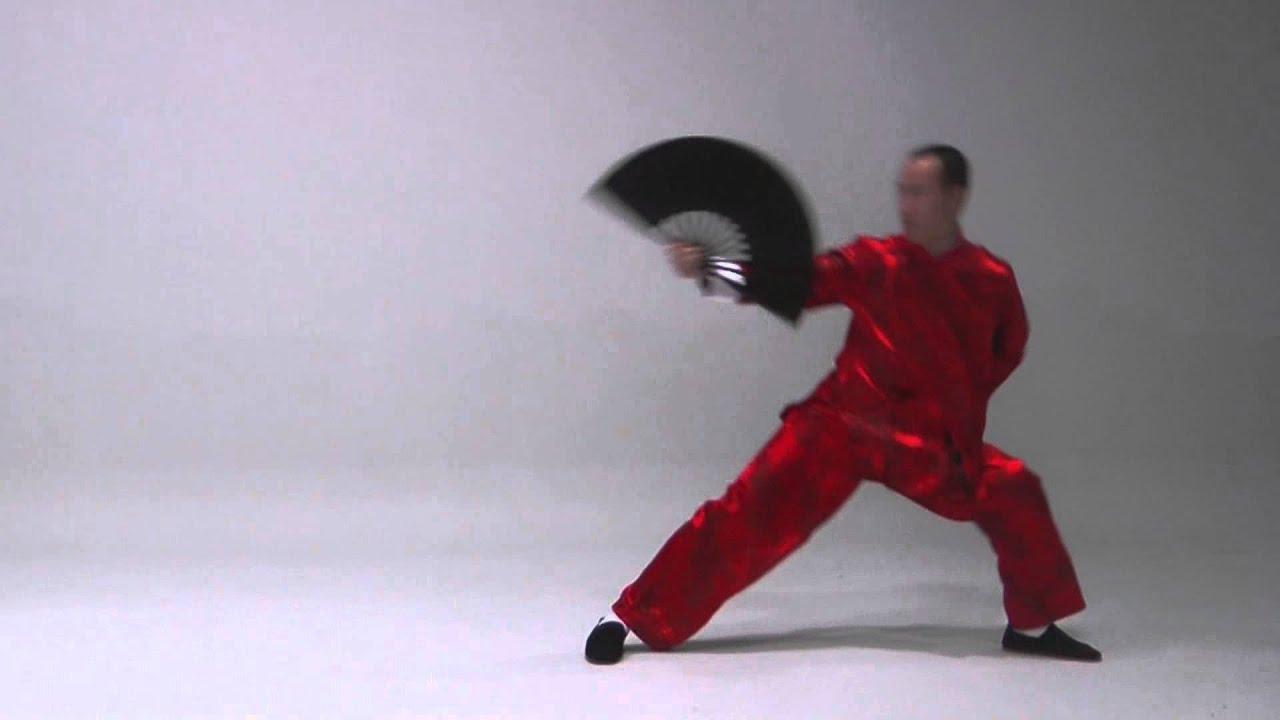 The Kung Fu Fan