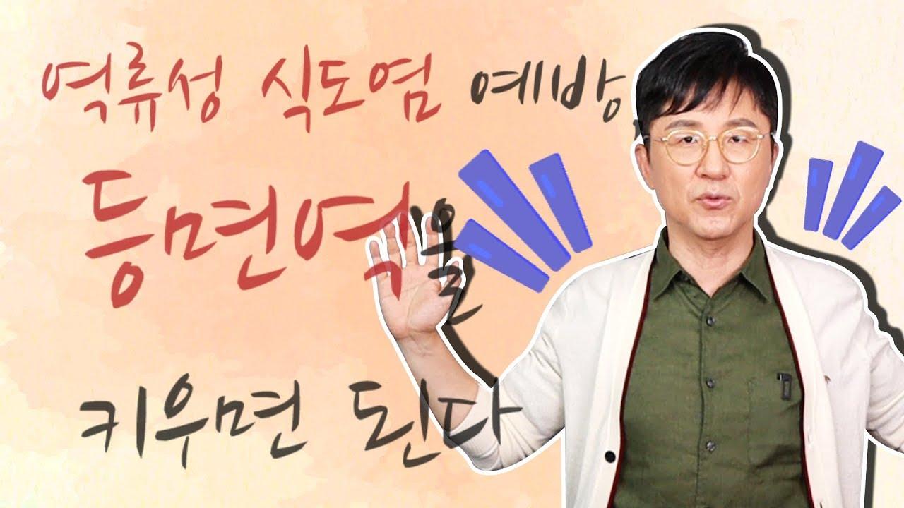 역류성 식도염 예방, 등 면역을 키우면 된다?!  - 서재걸의 그림 병원 #24