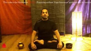Dhyana (meditation)-padmasana, yoga mudra, tolasana, sukhasana & siddhasana