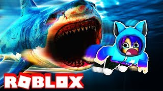 ESCAPING THE FASTEST SHARK IN THE WORLD! Roblox Sharkbite