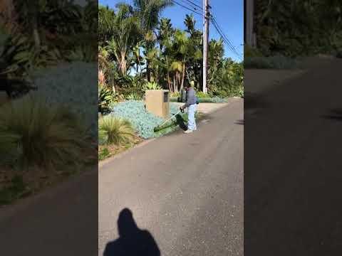 Carlos Landscaping U0026 Maintenance