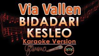 Via Vallen - Bidadari Keseleo KOPLO (Karaoke Lirik Tanpa Vokal)