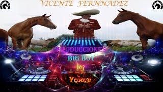 Vicente Fernandez Grandes Temas del Recuerdo