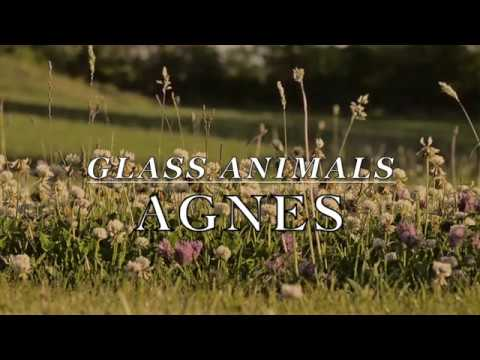 Glass Animals - Agnes [LYRICS]