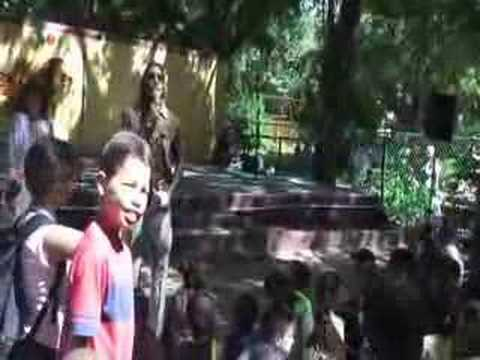 Jard n zool gico de la habana cuba youtube for Jardin zoologico de la habana