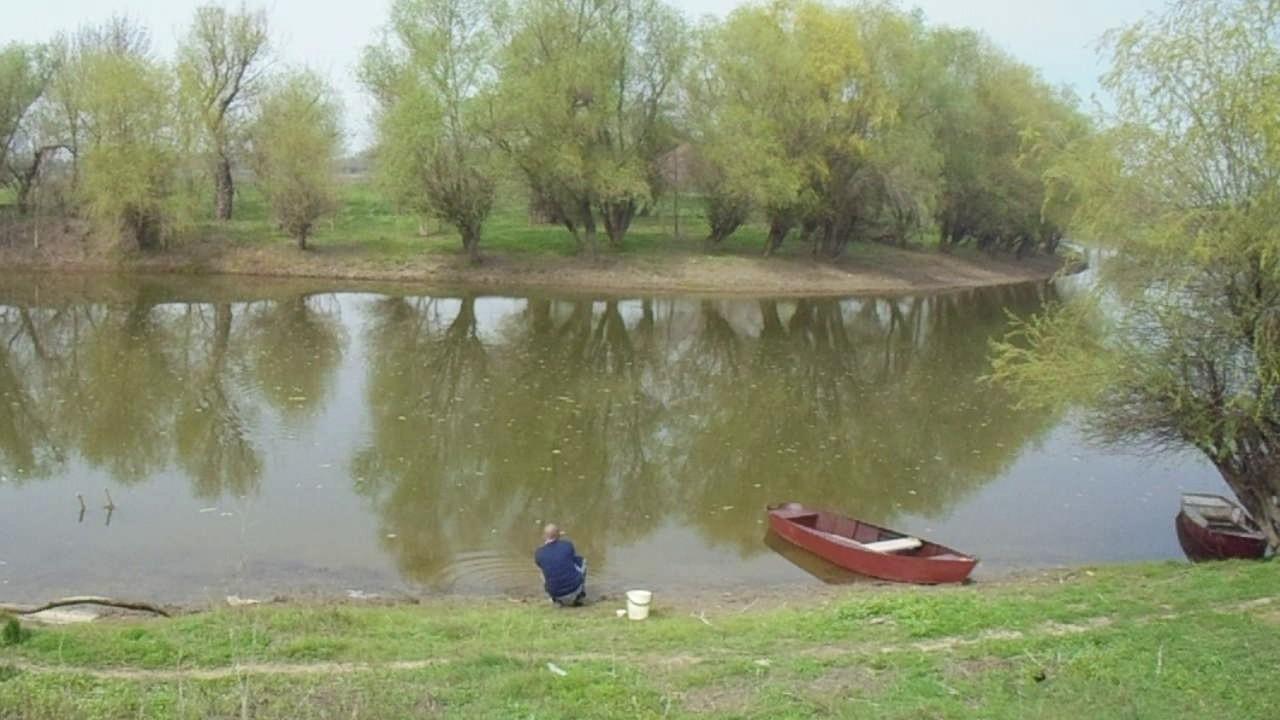 Живопись. Теплый вечер 50х60 река, дом, деревья, трава, лес. Www. Agafonova33. Livemaster. Ru купить соловки разноцветный, холст на подрамнике,