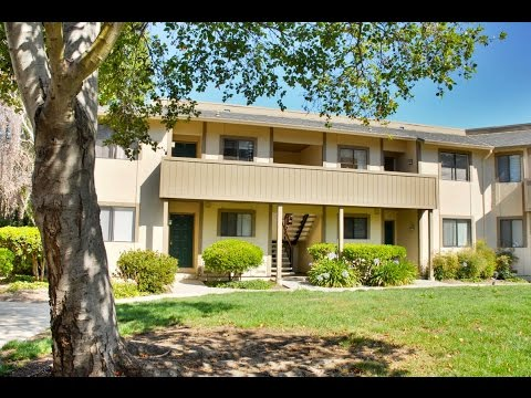 Home for sale – 1164 N. Abbott Ave., Milpitas, CA 95035