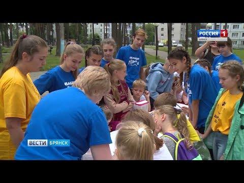В Сельцо организован летний отдых детей во дворах