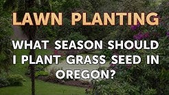 What Season Should I Plant Grass Seed in Oregon?