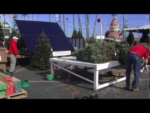 worlds first solar powered christmas tree lot by stellar solar purdy farms - Solar Powered Christmas Tree