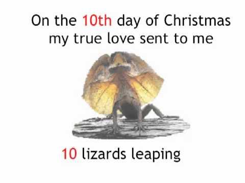 12 New Days Of An Australian Christmas