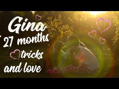 Gina beagle ~27 months~ dog tricks and love