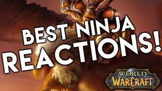 5 BEST Ninja Loot Reactions in World of Warcraft