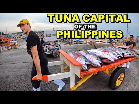 BIGGEST GIANT TUNA FISH MARKET IN THE PHILIPPINES | Foreigner Works As A Kargador (GenSan Fish Port)