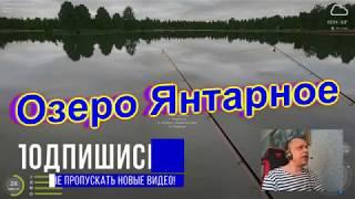 Russian Fishing 4 ГДЕ И НА ЧТО ЛОВИТЬ НА ОЗЕРЕ ЯНТАРНОЕ В РР 4