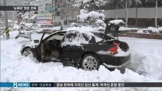 '폭삭' 앉은 비닐하우스…40cm '눈폭탄' 맞은 정읍 / SBS