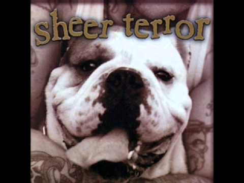 Sheer Terror- Just can't Hate Enough