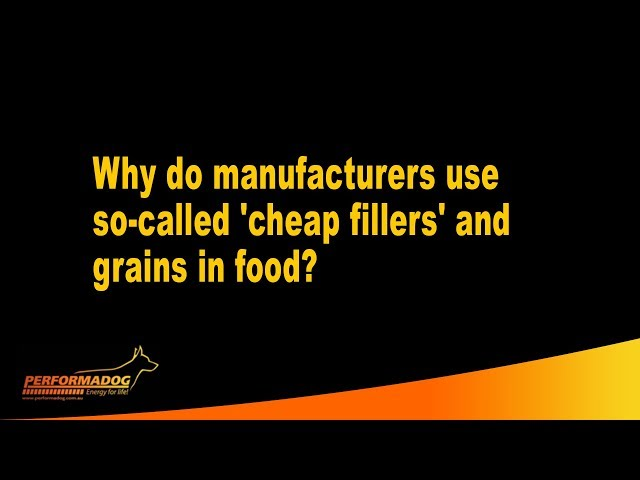 Why do manufacturers use so called 'cheap fillers' and grains in food? - Performadog