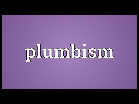 Header of plumbism